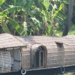 kerala-boat-900-280